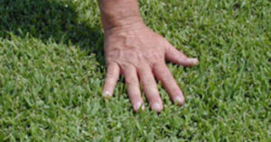soil and stone factory turf with hand