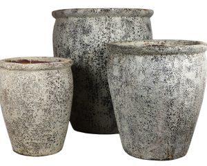 Ancient Athens Pot